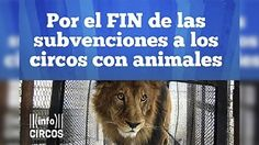 end of public subsidies to circuses with wild animals