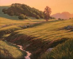 """West County Creek, 20"""" x 24"""", Chileno Valley, California, Northern California Landscape Painting, West Sonoma County, West Marin County, Sonoma County Landscape Painting, Marin County Landscape Painting, original oil painting, California hills, country hills, country creek, creek, country glow, country light, scenic country, dreamy light, eucalyptus, eucalyptus trees, fine art, Terry Sauve"""