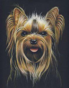 Portrait de votre animal aux crayons de couleur 9 x 12 po - 1 sujet