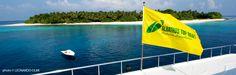 maldive in crociera