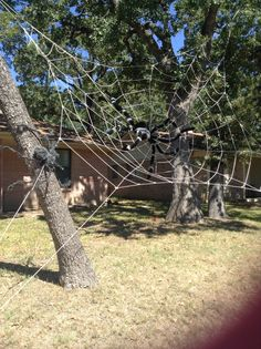 giant spider web halloween decoration - Giant Spider Halloween Decoration