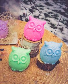 Owl Soap Owl Party Favor Owl Birthday It's a Hoot Owl