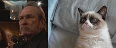 TommyLeeJones-is-Grumpy-Cat