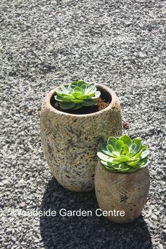 Atlantis Decorative Garden Pots Set of 2 Woodside Garden Centre, Pot Sets, Olive Tree, Atlantis, Garden Pots, Planter Pots, Jar, Inspire, Antique