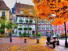 Autumn,  Hildesheim, Germany