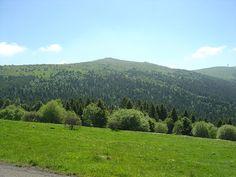 Cet espace naturel privilégié des Hautes Chaumes des Monts du Forez, offre des paysages somptueux ouverts sur tous les massifs environnants. En savoir plus sur http://www.sejour-touristique.com/vacances-en-france/decouverte-de-nos-regions/auvergne/puy-de-dome/col-du-beal-massif-central.html#7FTDqku0x5AGhm9X.99
