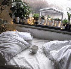 rainy dreaming
