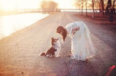 Collie and bride