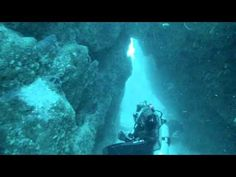 Scuba Diver Girls Dive with Sharks in Cook Islands!!!