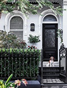 Read this exciting story from Australian House & Garden Magazine June This narrow Sydney terrace punches above its weight thanks to smart spatial planning and a dynamic decorating approach. Terrace House Exterior, Victorian Terrace House, Facade House, Victorian Homes, House Exteriors, Bungalows, Exterior Colors, Exterior Design, Black Exterior