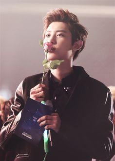 how i wish i was that rose lol #EXO #Chanyeol