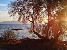 Beautiful seafront in Aegina.  Ph.Laura Novel