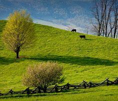 Coles Hill,Pittsylvania County,VA
