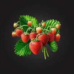 Series of illustrations for liquor labels – Hapur Şupur Healthy Eating Tips, Healthy Nutrition, Fruits And Vegetables, Veggies, Vegetable Drinks, Food Illustrations, Greek Yogurt, Liquor, Strawberry