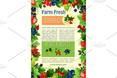 Vector poster of farm fresh berries and fruits Graphics Berries vector poster for farm market or berry store. Farm fresh raspberry and black or red currant by Vector Tradition SM