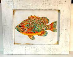 i pesci ed i loro colori  libera ed essenziale  di sottovento