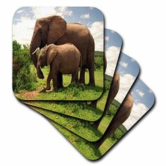 3dRose cst_44876_3 Mama N Baby Elephants in Wild Ceramic Tile Coasters Set of 4 * Visit the image link more details. (This is an affiliate link)