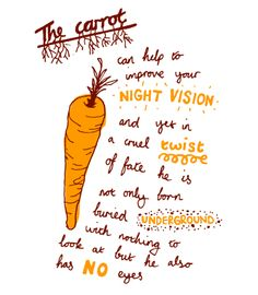 carrot illustration by damien weighill