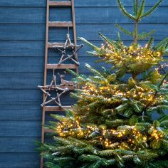 Buitenleven   De mooiste winter & kerst tuin inspiratie • Stijlvol Styling - Woonblog