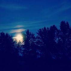 Lever de lune à Brin de Cocagne - Chambre d'hôtes écologique de charme dans le Tarn près d'Albi - Brin de Cocagne