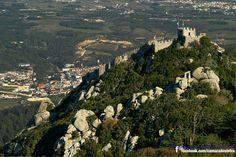 Natureza (Castelo dos Mouros Sintra)