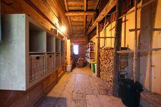 Ferienhaus - plausis Webseite! Website, Cottage House, Viajes