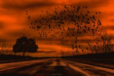 Road to NoWhere ..! by N Gunda  on 500px