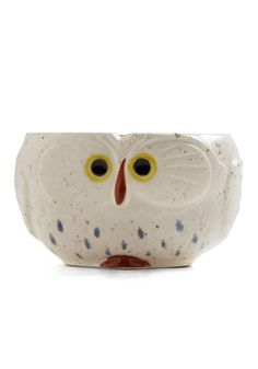 Know It Owl Mug. This would be a cute container for a herb plant. $19.99