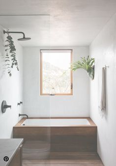 Minimalist Simple With Wood Bathroom Shower And Tub Separate Yet Together From Rest Of Room