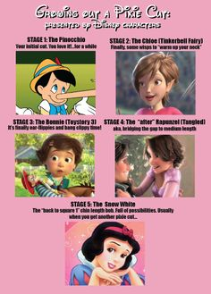 This is my life. Grow out your pixie cut until it actually becomes a normal length... then cut it again.