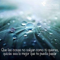 ¿NO CREES?... (((Sesiones y Cursos Online www.ciaramolina.com #psicologia #emociones #salud)))