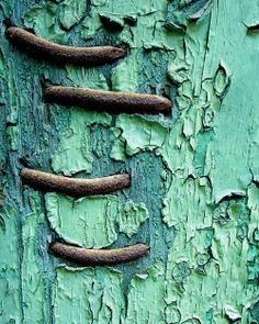 Items similar to Limited Edition Fine Art Photograph-Abstract-Tennessee-Wall on Etsy Peeling paint and rusting metal staples surface design inspiration<br> Wabi Sabi, Verde Vintage, Mint Paint, Foto Macro, Macro Photo, Art Texture, Wood Texture, Graphisches Design, Peeling Paint