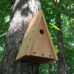 Build A Bird Houses . Awesome Build A Bird Houses . Pin by Pleasant Ranch On Modern Birdhouses Bird House Plans, Bird House Kits, Building Design, Building A House, Bird Nesting Box, Nesting Boxes, Modern Birdhouses, Birdhouse Designs, Bird Houses Diy