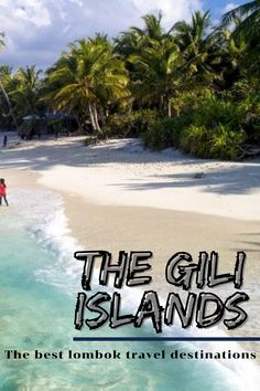 The Gili Islands are a group of 3 tiny islands – Gili Trawangan, Gili Meno and Gili Air – in Indonesia, near the coast of northwest Lombok Island. Characterized by sandy beaches fringed with palm trees, they're known for their coral reefs just offshore. . #lombok #indonesia #travel #traveling #giliisland #island #nature #bucketlist Travel Images, Travel Pictures, Bucket List Destinations, Travel Destinations, Travel Deals, Travel Tips, Adventure Time, Adventure Travel, Wonderful Places