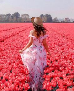 tulips garden care Discovered by g . Find images and videos on We Heart It - the app to get lost in what you love. Beauty Photography, Portrait Photography, Travel Photography, Ideas Para Photoshoot, Tulip Festival, Tulip Fields, Girls With Flowers, Shooting Photo, Belle Photo