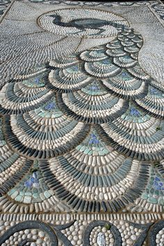 peacock path by claire.ashman, via Flickr