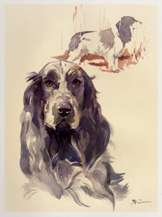 Vintage COCKER SPANIEL Print Dog Gallery Wall Art Gift for Dog Lovers 876