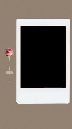 Collage Background, Flower Background Wallpaper, Cute Wallpaper Backgrounds, Pretty Wallpapers, Picture Templates, Photo Collage Template, Polaroid Picture Frame, Polaroid Frame Png, Instagram Frame Template