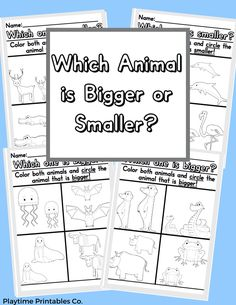 "Practice size difference with the ""Which Animal is Bigger or Smaller?"" Activity! Follow the prompt of circling the bigger or smaller animal and coloring the animals in for added fun! #KinderWorksheets #PreschoolPrintableWorksheets #KindergartenWorksheets #WorksheetsKindergarten Big Animals, Names, Color, Colour, Colors"