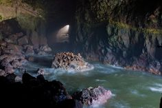 Sea Lion Caves, Florence, OR. The caves are breathtakingly beautiful.