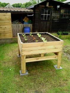 bac sureleve Raised vegetable Planter / Potager surélevé in pallet garden with Planter Pallets / Especially great for those who can't always bend down --- Vegetable Planters, Raised Vegetable Gardens, Wooden Garden Planters, Raised Garden Beds, Pallet Planters, Raised Beds, Vegetable Gardening, Diy Pallet Projects, Pallet Ideas