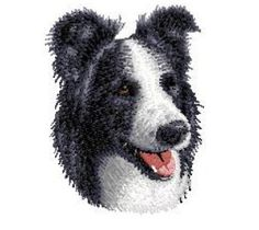 Shoply.com -Wonderful Border Collie Breed Dog  Machine Embroidery Design in 4 sizes - MUST SEE. Only $3.99