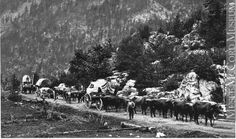 Wagon train on Cariboo Road, BC, 1888 Old Pictures, Old Photos, Fraser Canyon, Vancouver, Chuck Wagon, Western Canada, Largest Countries, Old West, History Facts