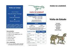 Lusodinos- Dinossauros de Portugal: Visitas guiadas do Museu da Lourinhã
