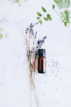 3 Green Cleaning Lavender Oil Uses + Recipes (Hello Glow) Best Essential Oils, Essential Oil Blends, Doterra, Crema Facial Natural, Lavender Oil Uses, Essential Oils For Inflammation, Do It Yourself Jewelry, Turmeric Tea, Tumeric Face