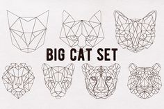 Big cat set by DSGN on @creativemarket