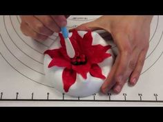 Tutorial to make Holly Leaf and Berries with Gumpaste (Sugar Paste) Fondant Flower Tutorial, Crepe Paper Flowers Tutorial, Fondant Flowers, Sugar Flowers, Poinsettia Flower, Christmas Poinsettia, Flower Ornaments, Christmas Star, Eatable Flowers