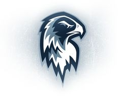 """This wouild work for """"Snow Birds"""" Logo   Port Huron Icehawks 3 by humanot • Uploaded: Jul. 02 '07"""