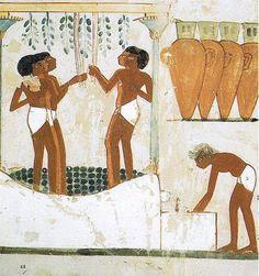 Civilización egipcia..Debido al clima en el que vivían, los egipcios tomaban baños varias veces por día. No llegaron a disfrutar de las bañeras,sino que disfrutaban de un sistema similar al de las duchas actuales.Las personas de más alto nivel socio-económico eran atendidas por sus sirvientes en los amplios cuartos de baño, en donde disfrutaban de estas duchas. Este efecto se lograba haciendo pasar el agua a través de un cestillo .La saponaria,  era utilizada como jabón.
