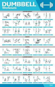 Dumbbell Workouts Workout Poster / Fitness Poster / Exercise Posters For Home Gym Full Body Dumbbell Workout, Gym Workout Chart, Body Workout At Home, Gym Workout Tips, Workout Men, Workout Plans, At Home Dumbell Workout, Total Gym Workouts, Elliptical Workouts